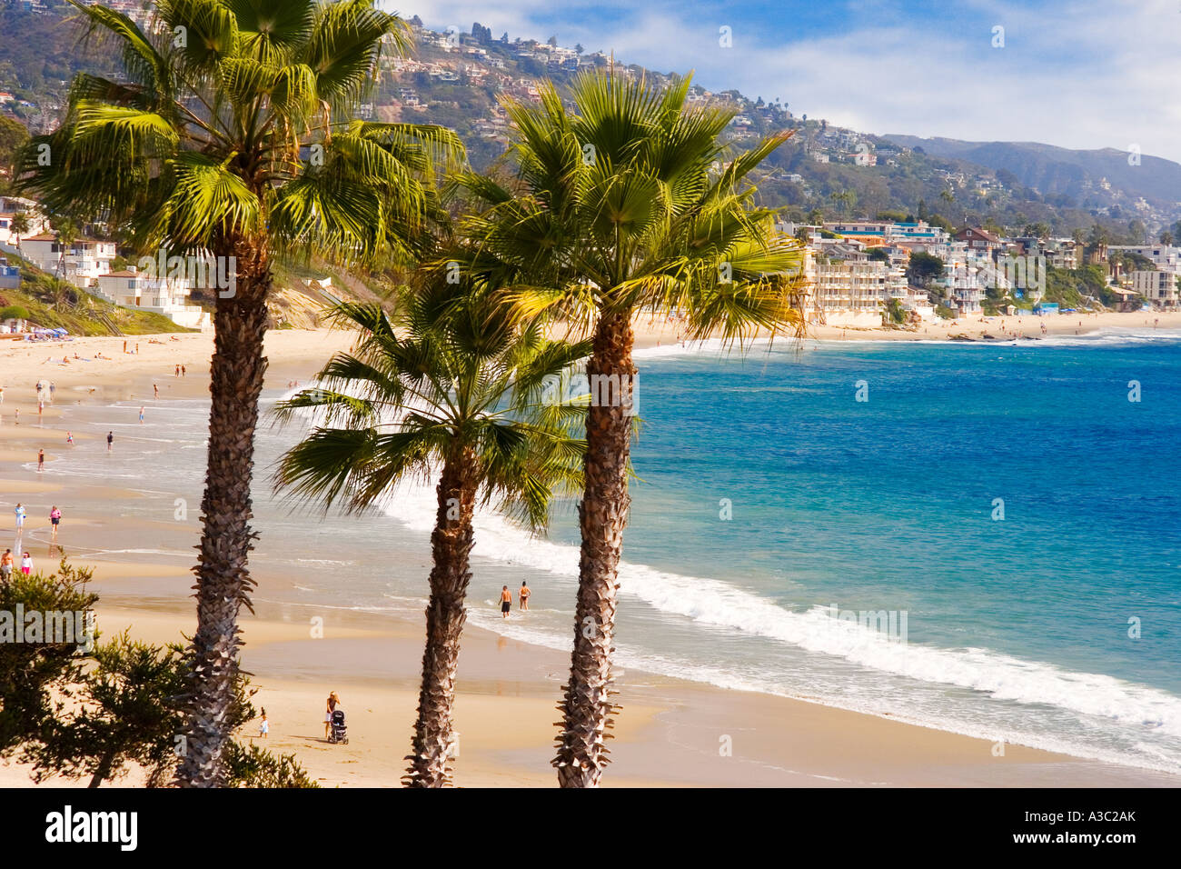 Palm Trees Frame Main Beach At Heisler Park In Laguna California USA