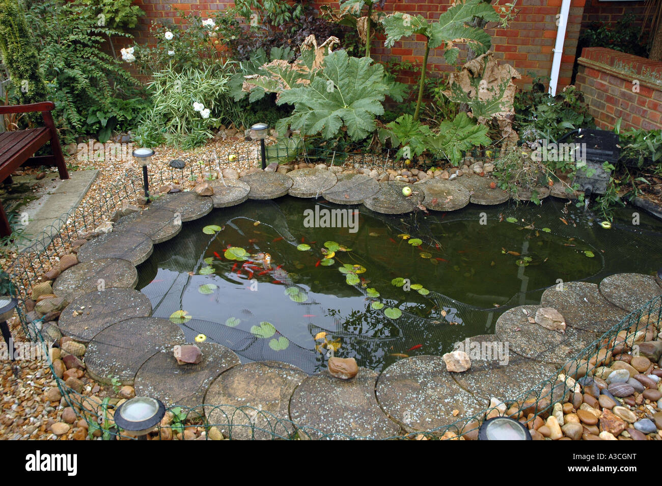 small pond in english garden plot stock photo royalty free image