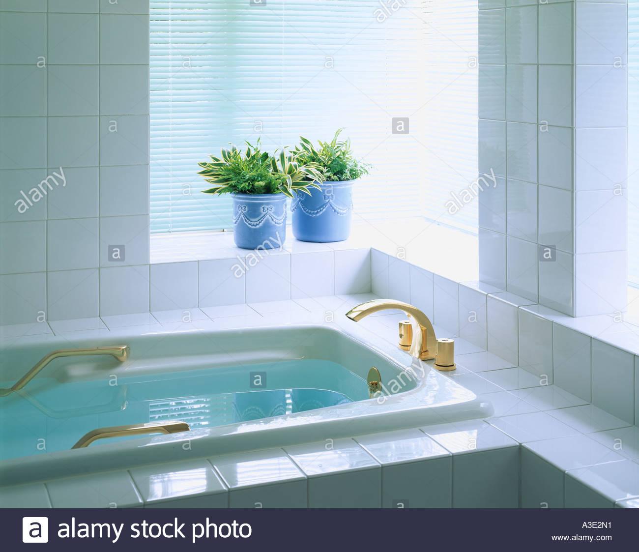dracaena bath bathtub bathroom placethe window backlight stock