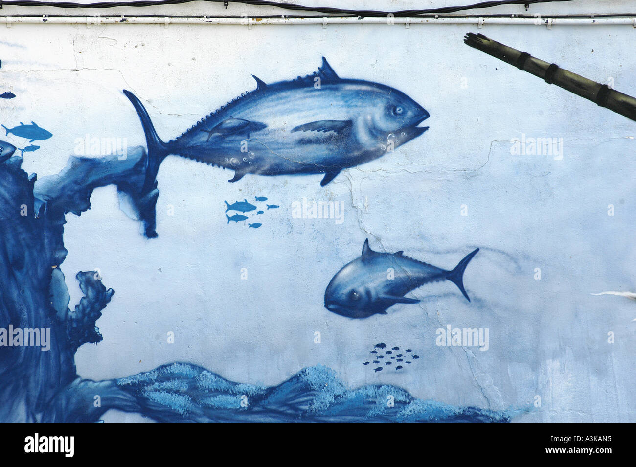 Painting Wall Method - Stock photo tuna wall painting mural barbate where it takes place the almadraba a traditional method of fishing for tuna when their migratio