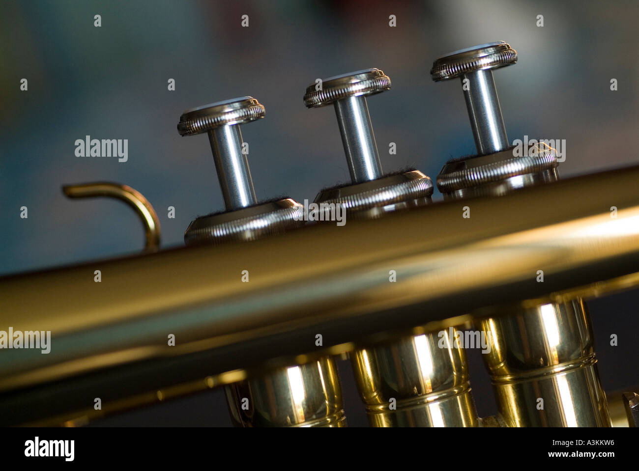 Notes of the Trumpet and Fingering Chart | Normans Music Blog