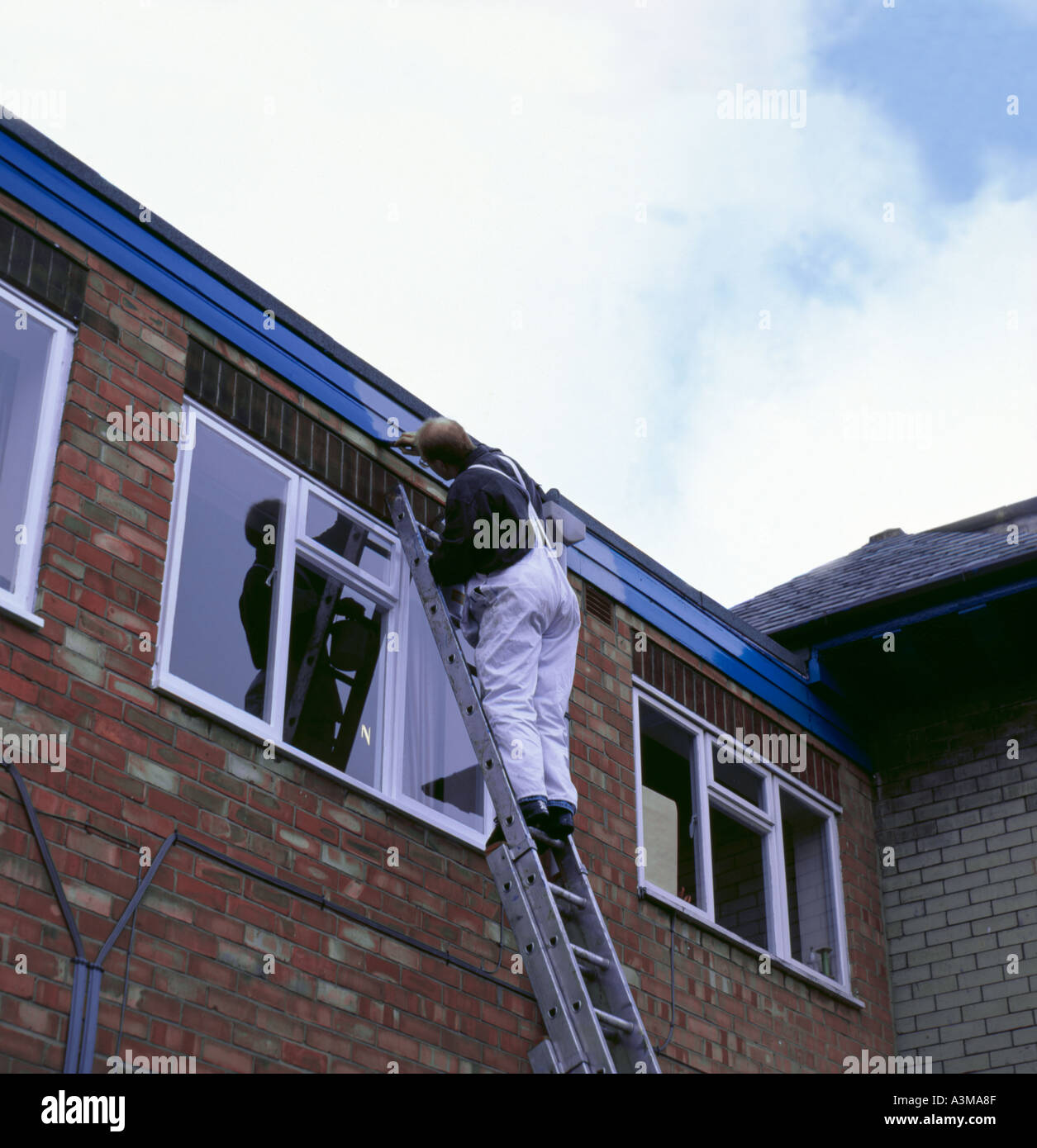 How to paint fascia boards - Home Maintenance And Repair Man Up A Ladder Painting A Fascia Board
