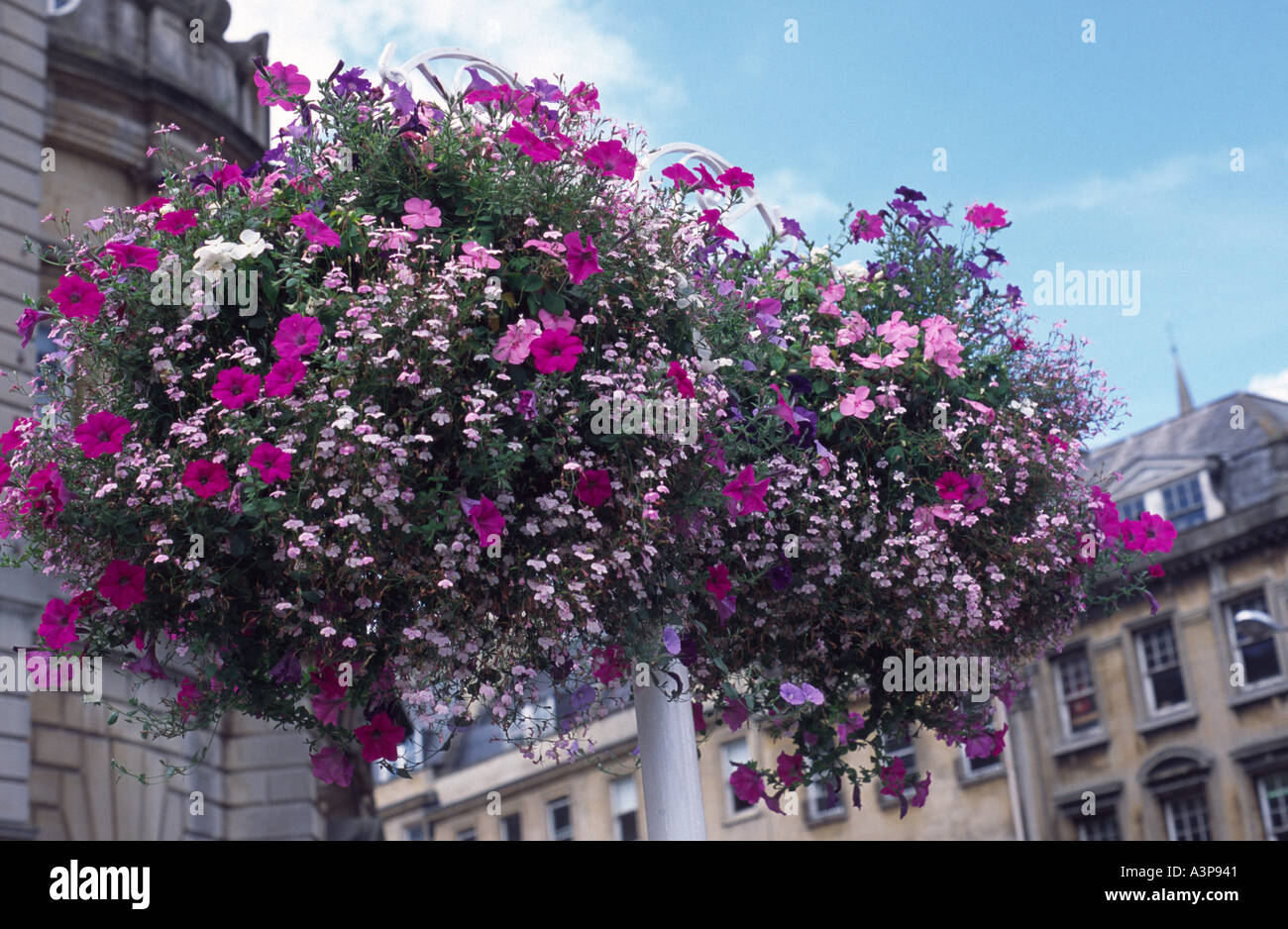 Pink flowering hanging baskets on a lamp post, Bath Spa, England ...