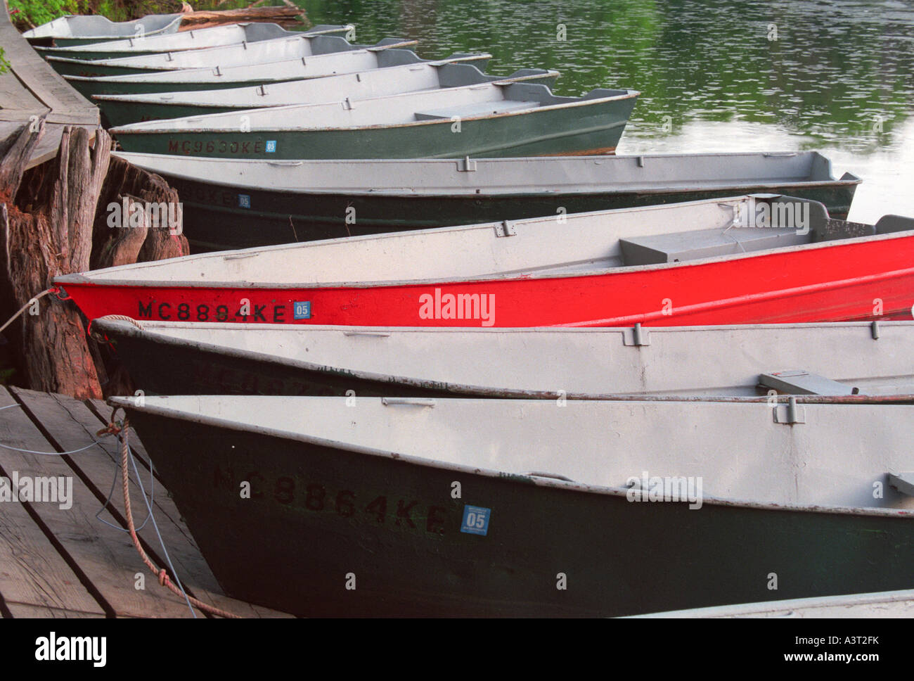 Row boats for rent