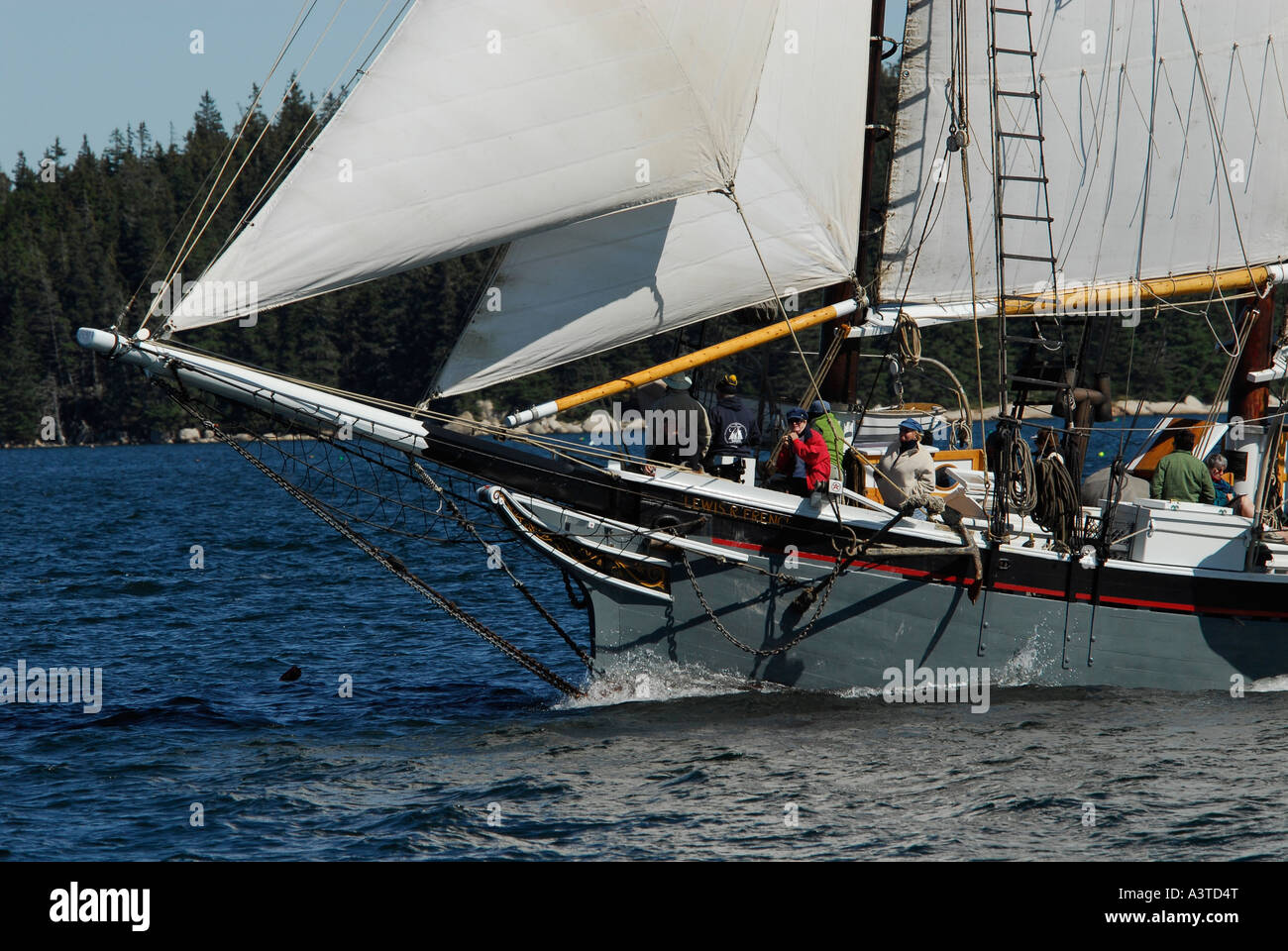 Wooden Boat Sail Reunion Eggemoggin Reach Stock Photo Royalty