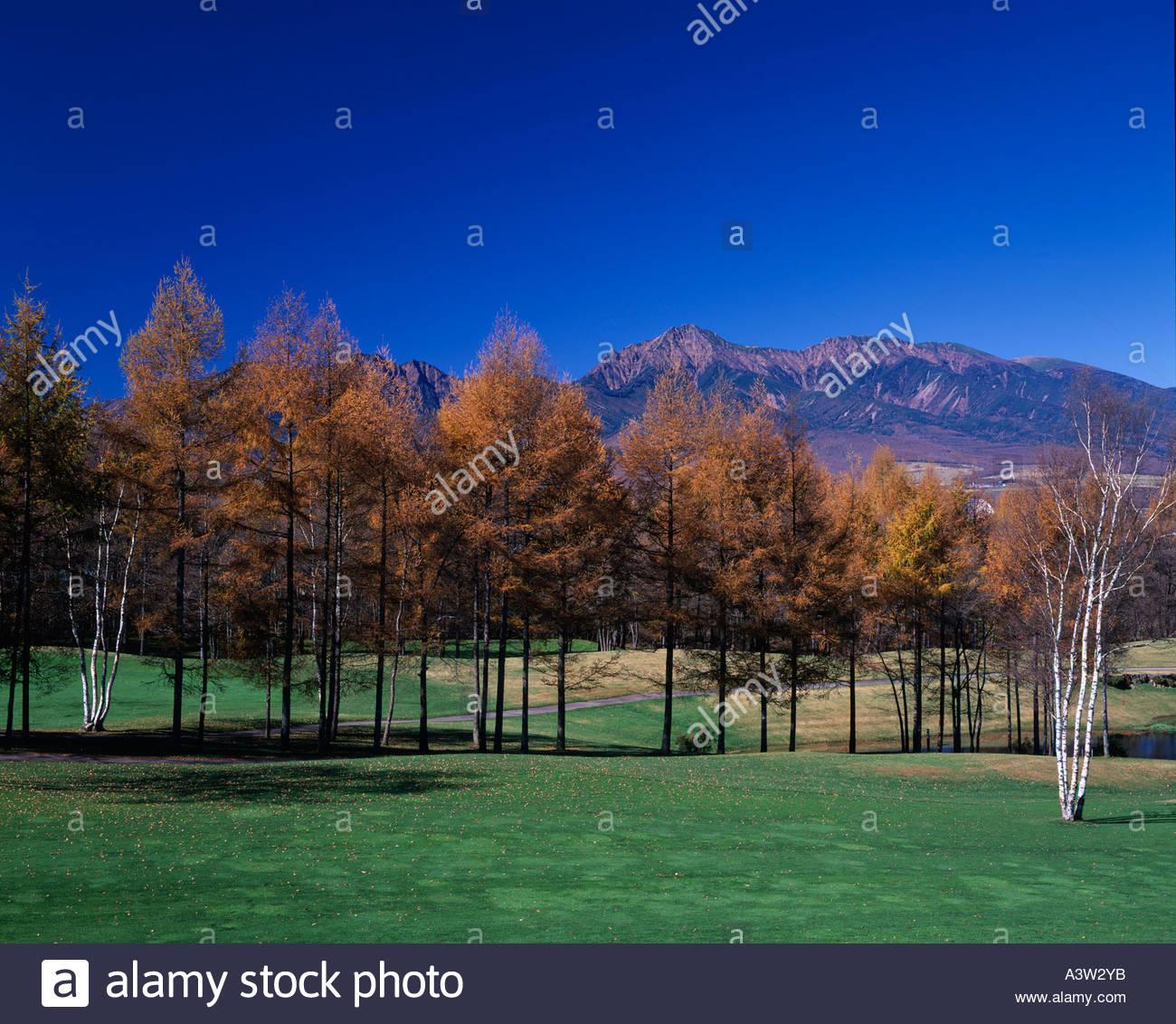 Autumn Mountain Yatsugatake Nobe Yama Tateshina Nagano