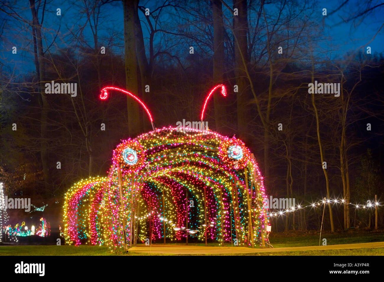 brookside gardens christmas lights display in wheaton md near washington dc usa caterpillar tunnel entrance - Dc Christmas Lights