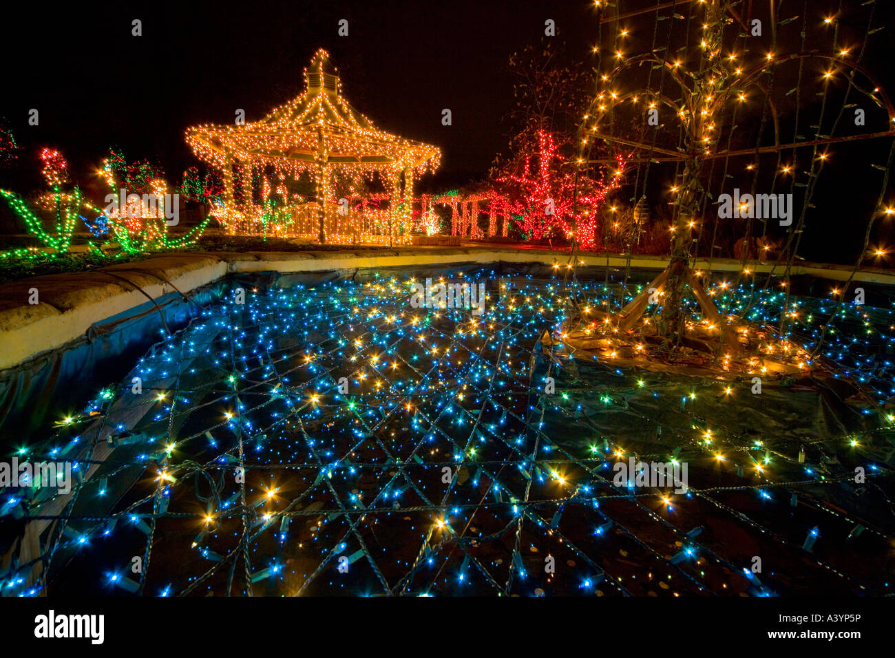 brookside gardens lights display in wheaton md