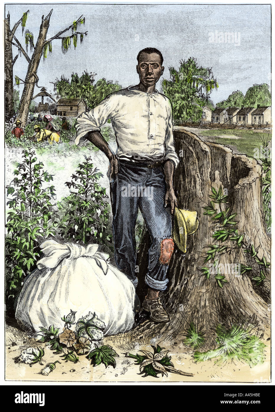 slavery in the south servitude and Start studying spread of slavery learn why was there a shift from indentured servants to african slaves for the south changed from slaves as property.