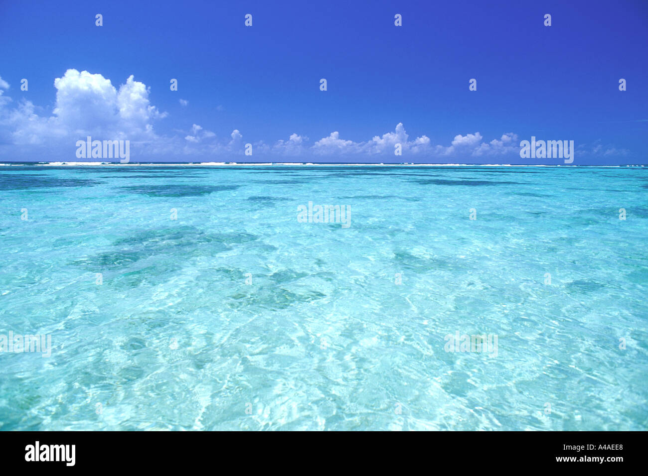 blue sky and shallow ocean water grand cayman caribbean