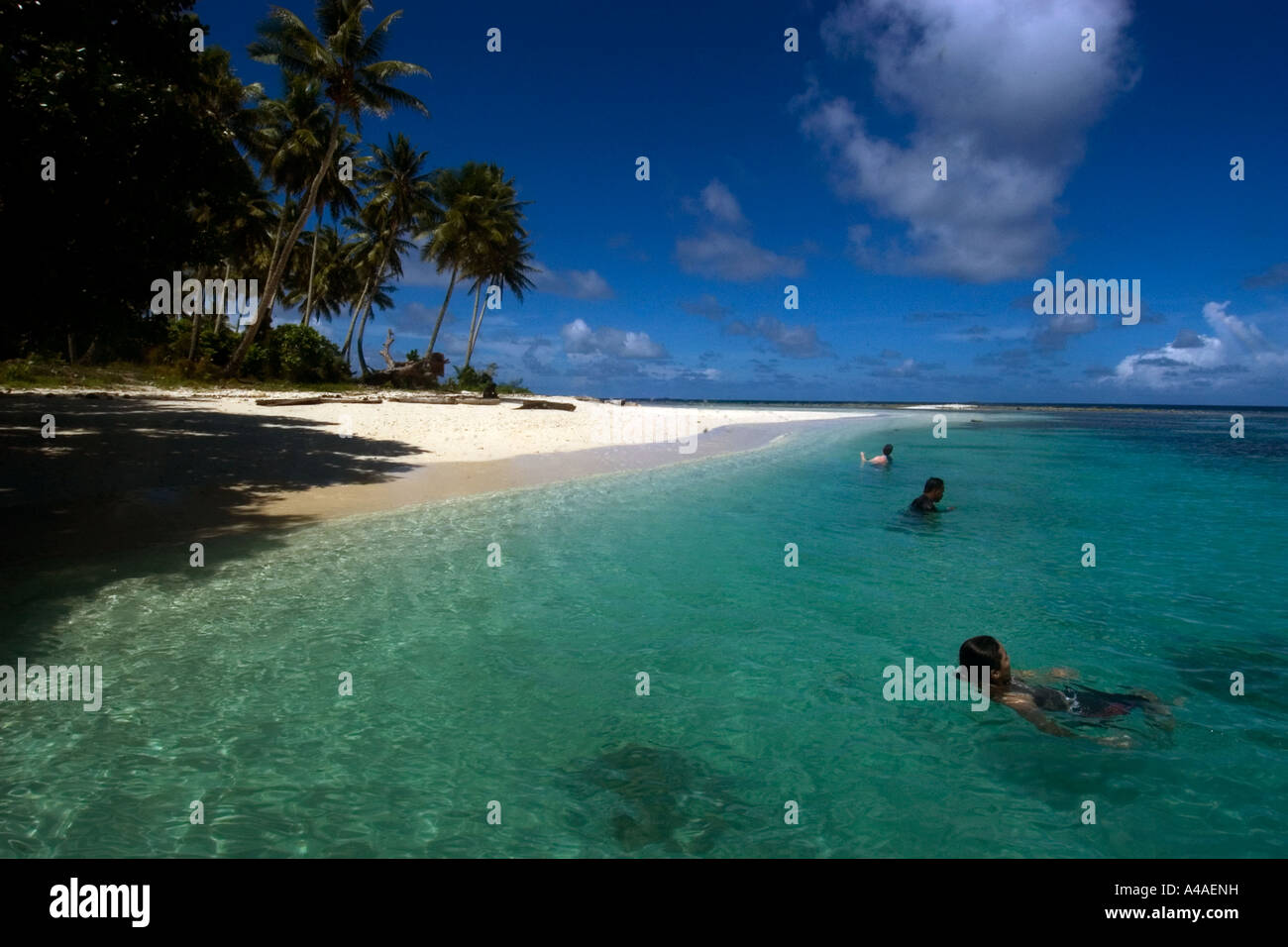 People enjoy the sheltered island beach in truk lagoon chuuk federated states of micronesia pacific