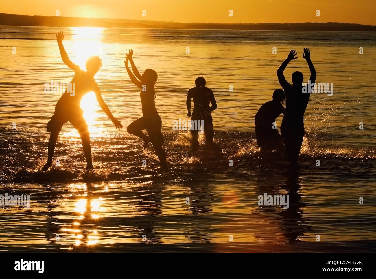 Swimming Suite Stock Images  Royalty Free Images   Vectors     Vacation Myrtle Beach