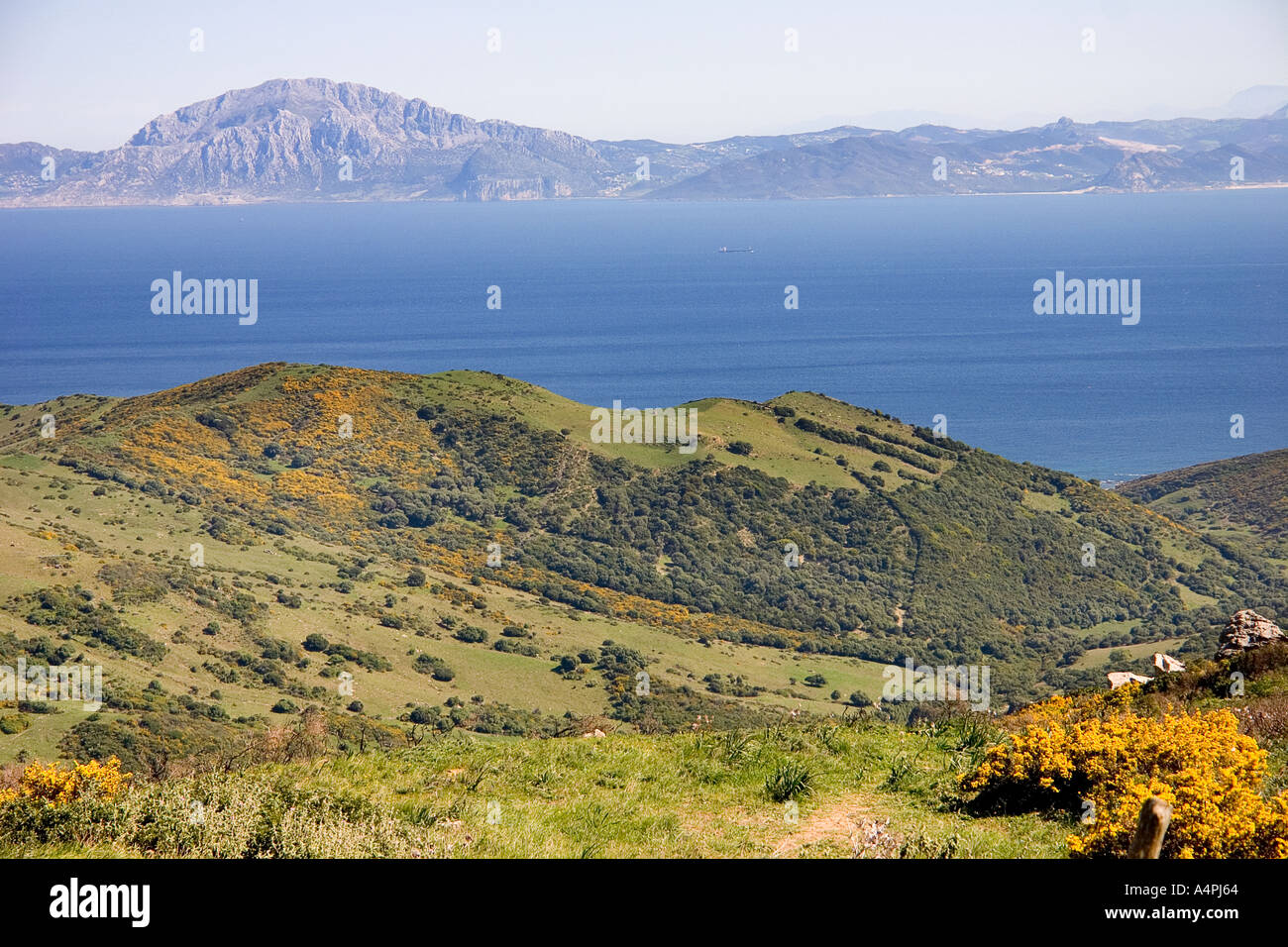 View across the straits of gibraltar from spain to north - Moroccan port on the strait of gibraltar ...