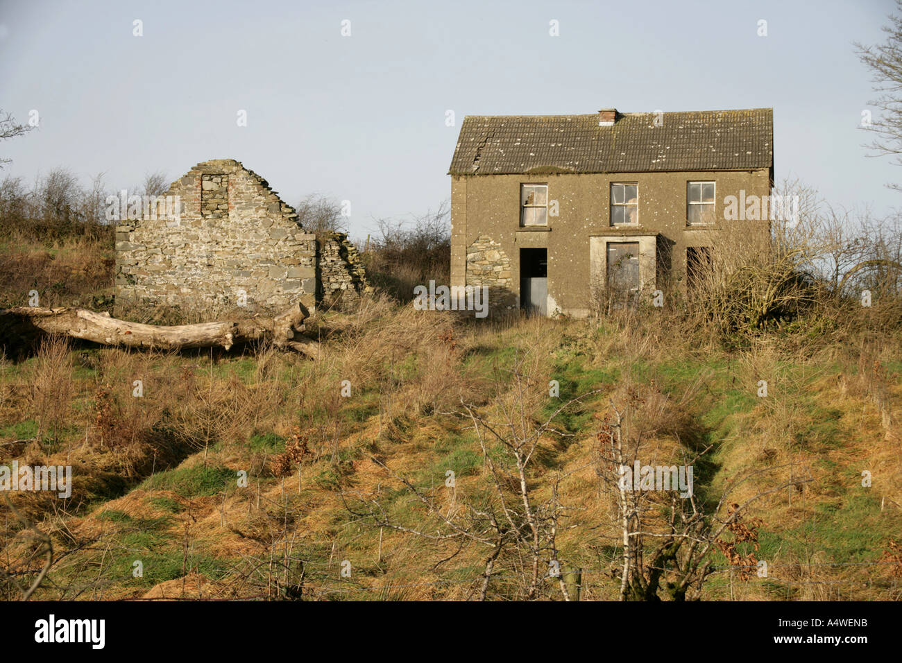 Typical Abandoned Farmstead 18th Century Ruined Byre And Early 20th Derelict Farmhouse County Monaghan Ireland