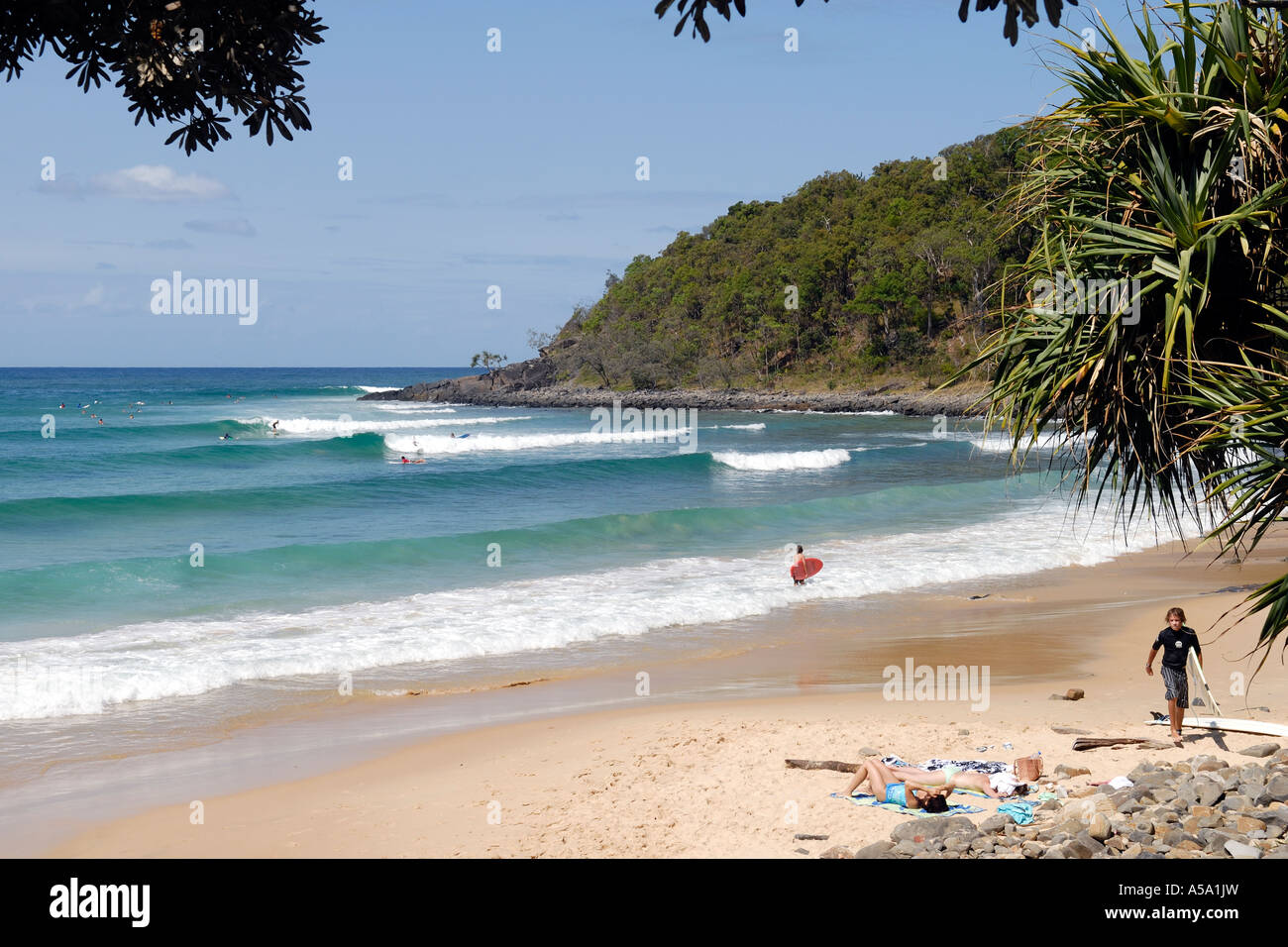 Free coupons sunshine coast