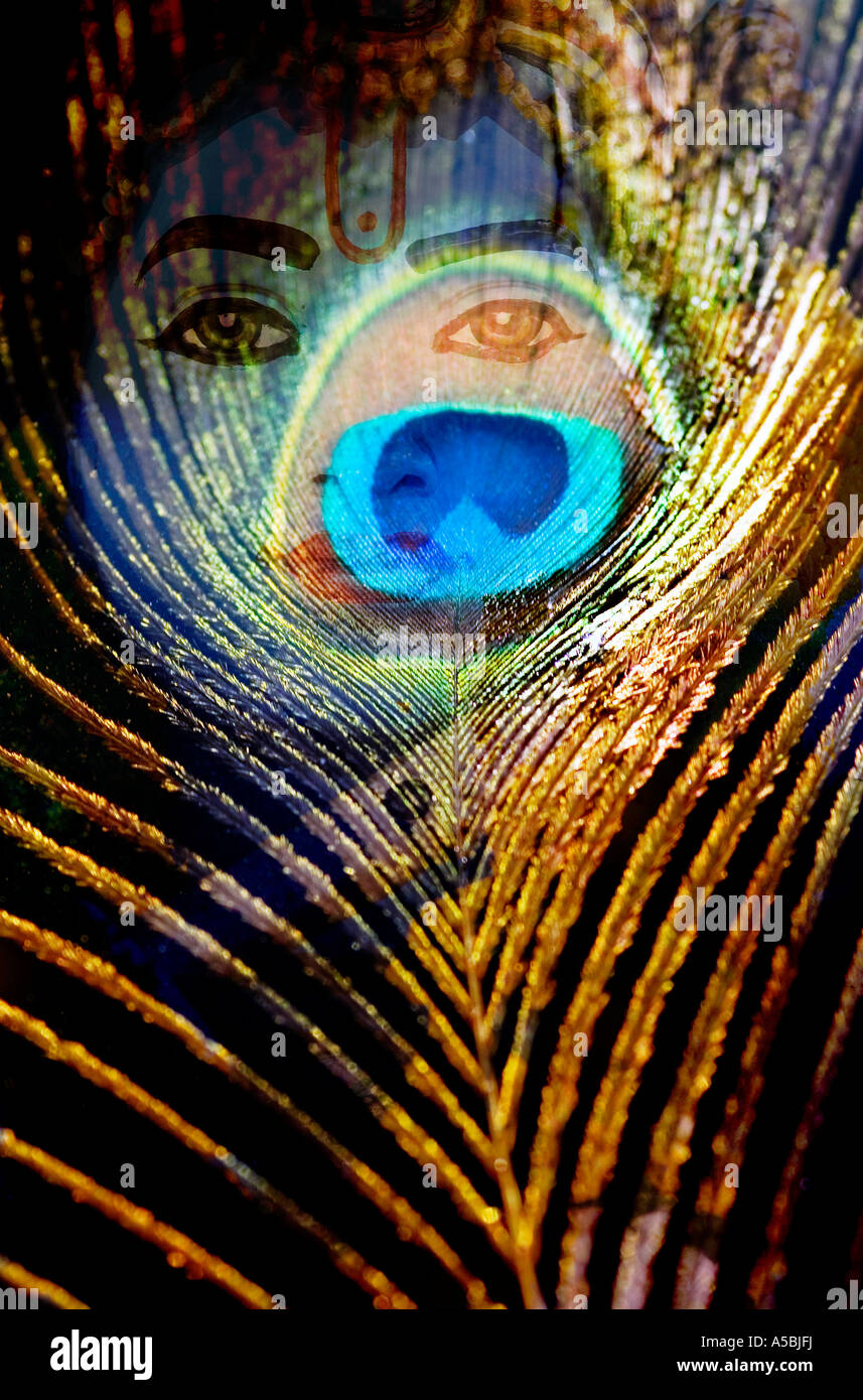 Lord krishna statue and peacock feather montage on white india lord krishna statue and a peacock feather montage on black india stock photo biocorpaavc Gallery