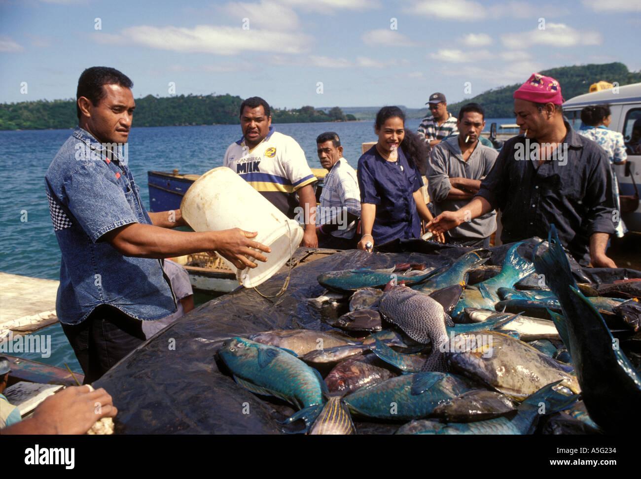 Tonga vavau neiafu fish on a market stall stock photo for Hagen s fish market