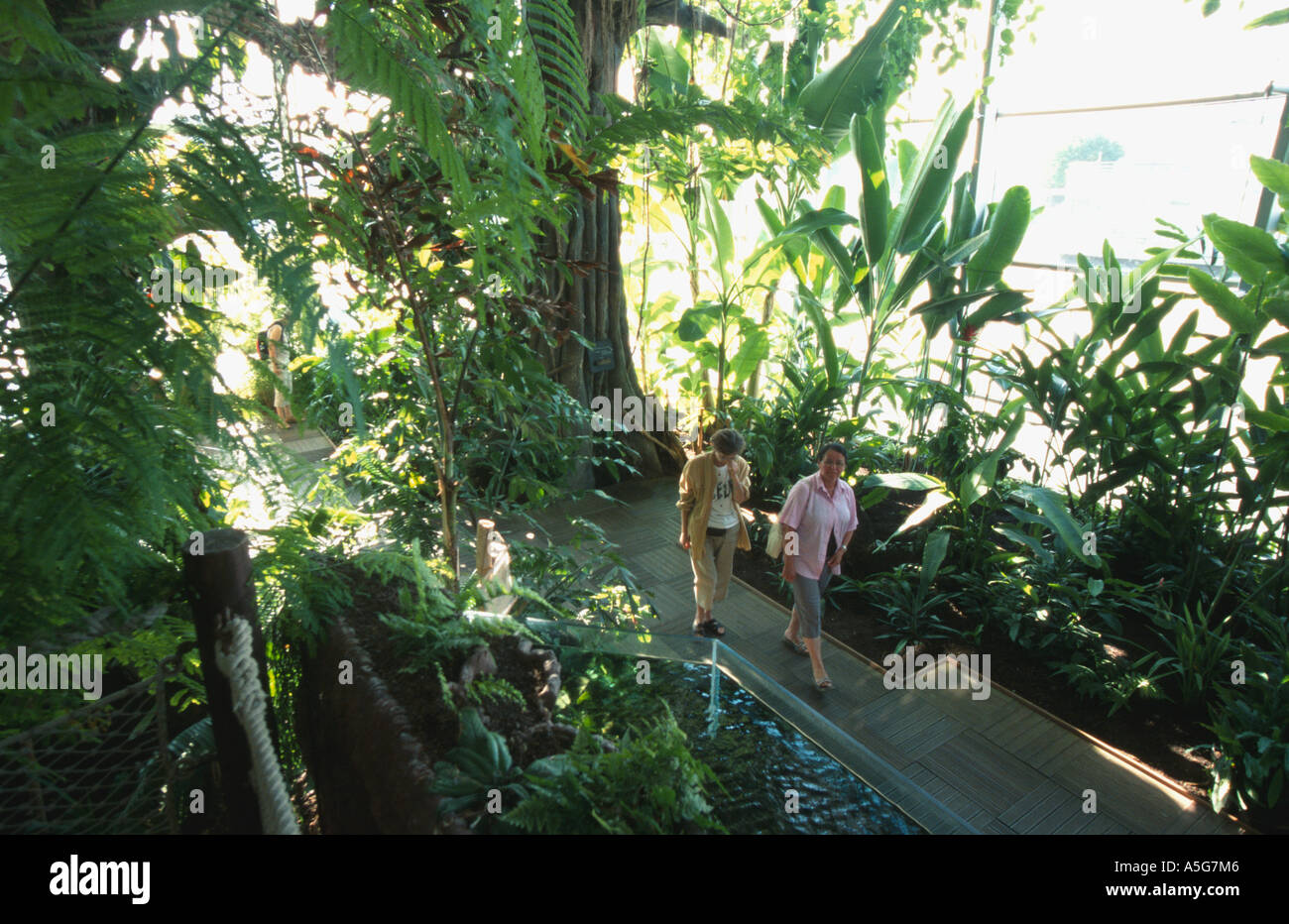 Tropical greenhouse serre tropicale aquarium la rochelle for Aquarium bassin