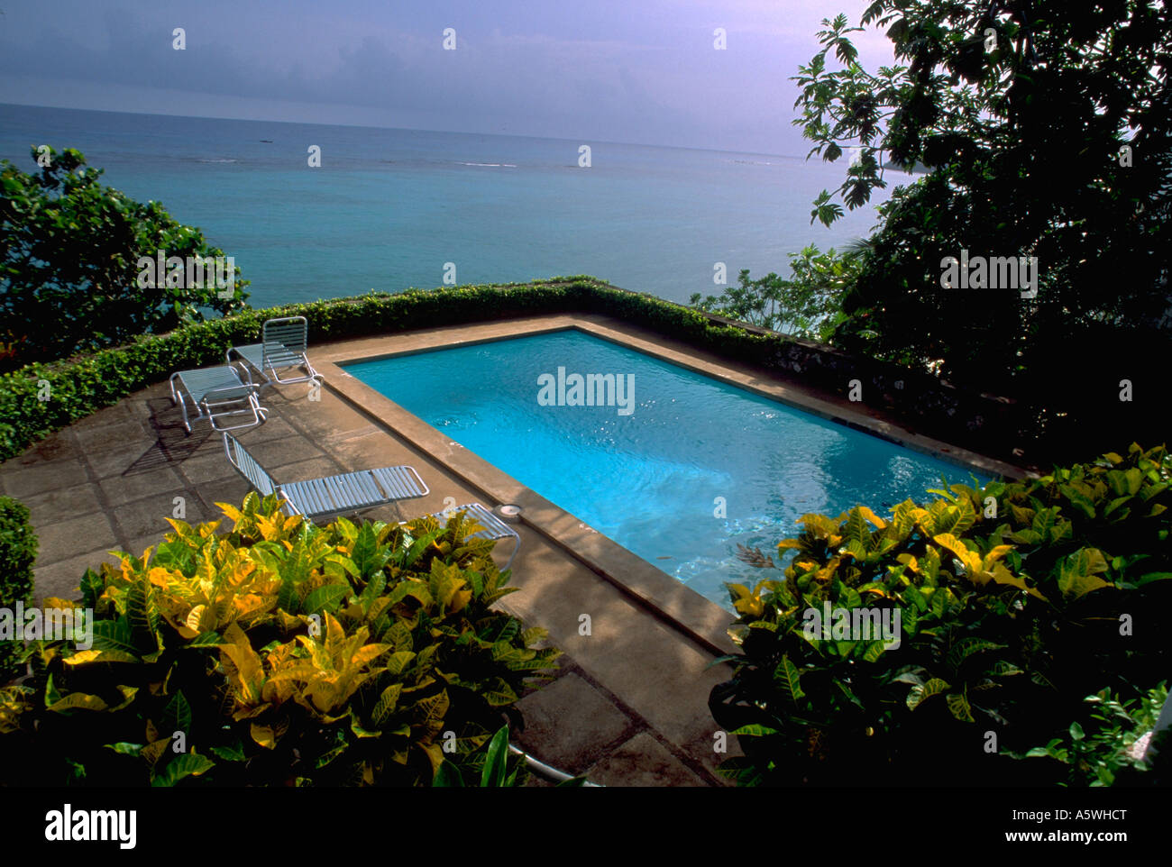 Painet Hk2245 Resort Swimming Pool Ocho Rios Calm Hotel Overlook Patio  Lawnchairs Lounge Chairs Blue Tile Ocean Vacation