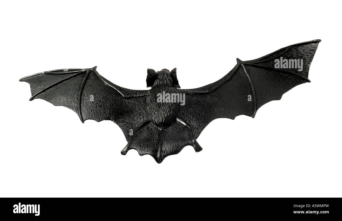 bat silhouette stock photo royalty free image 11393808 alamy