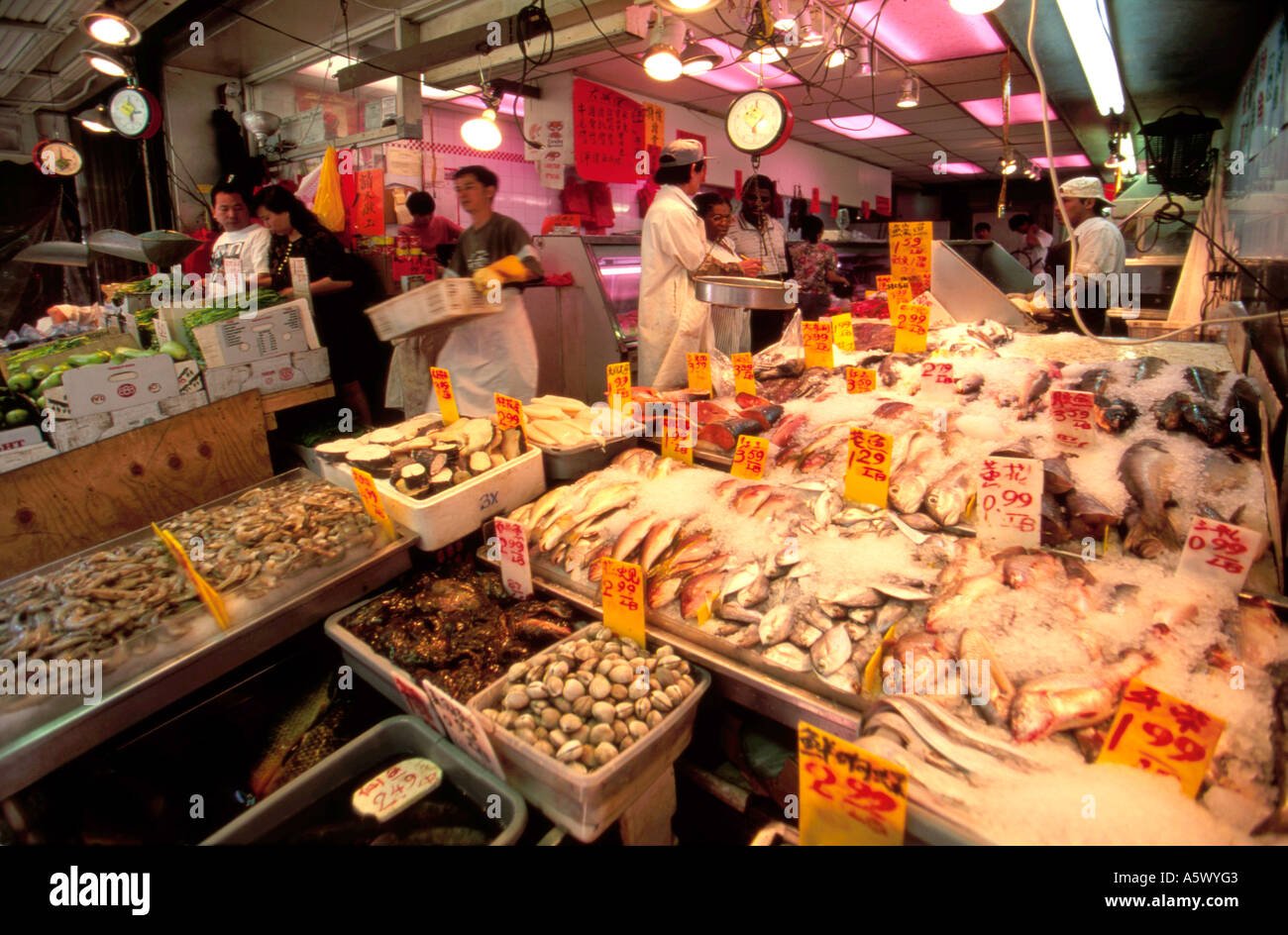 Fish shop in chinatown new york city usa stock photo for Chinatown fish market