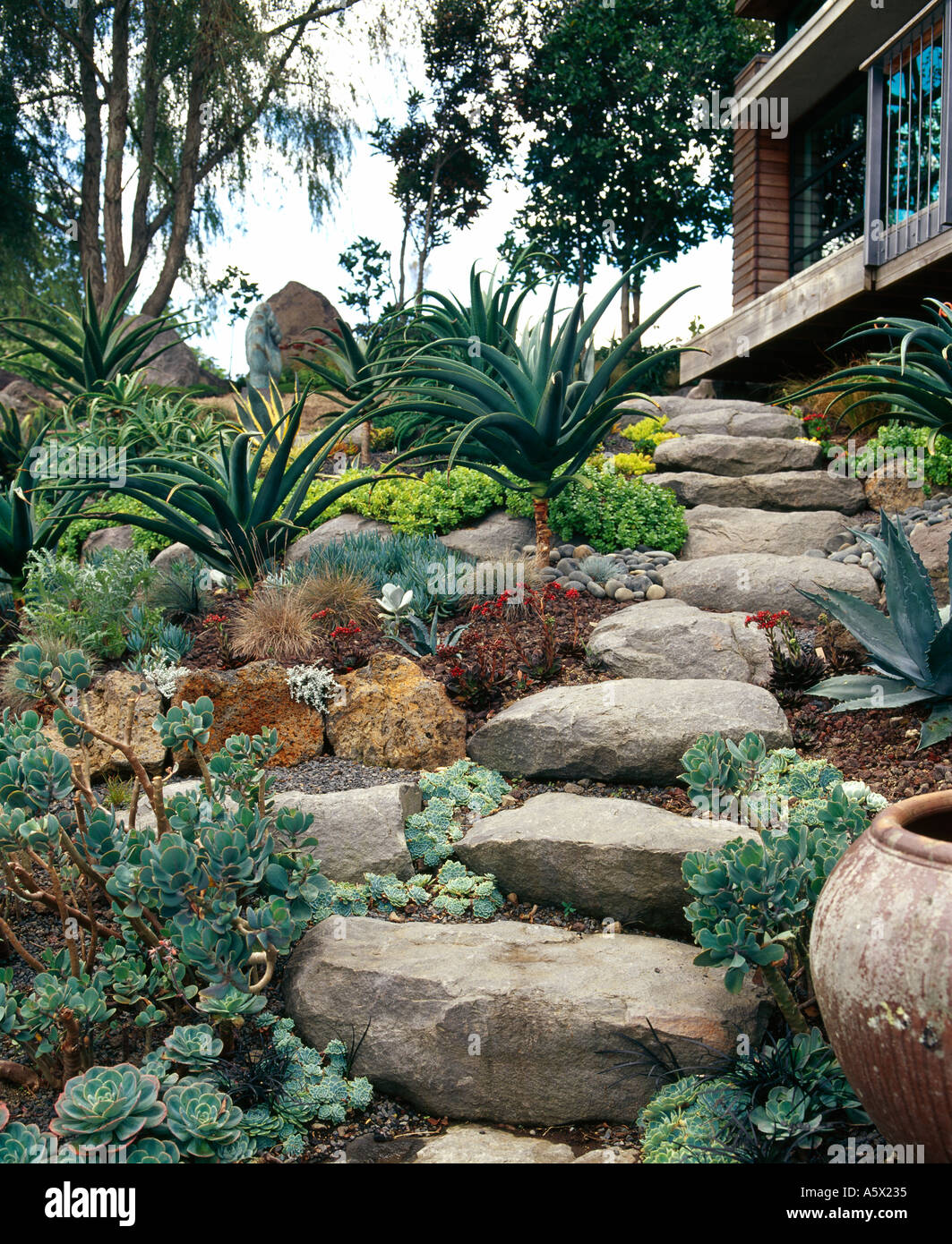 Waterview House Auckland New Zealand Rock Steps And