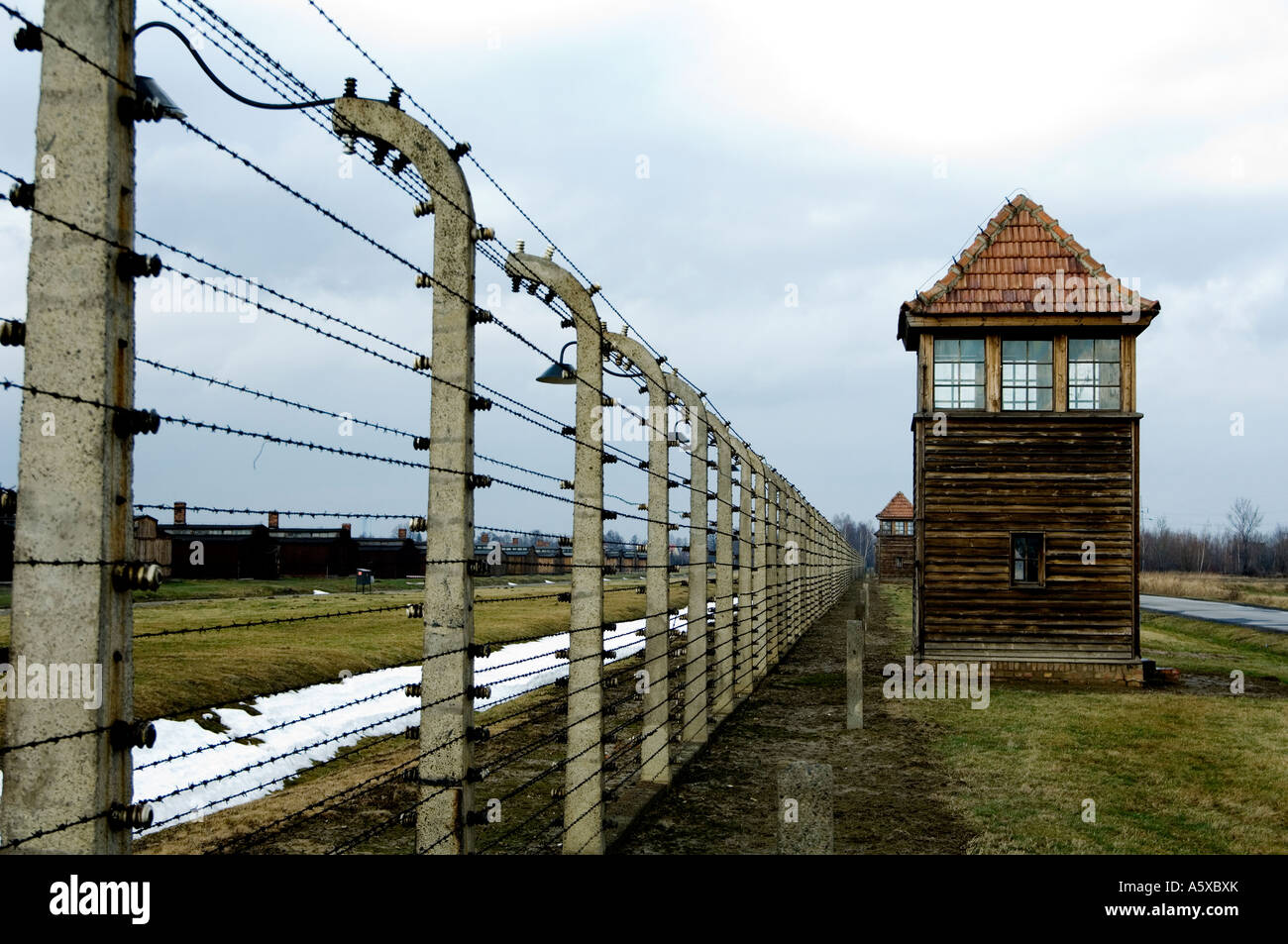 Barbed Wire Fence Concentration Camp