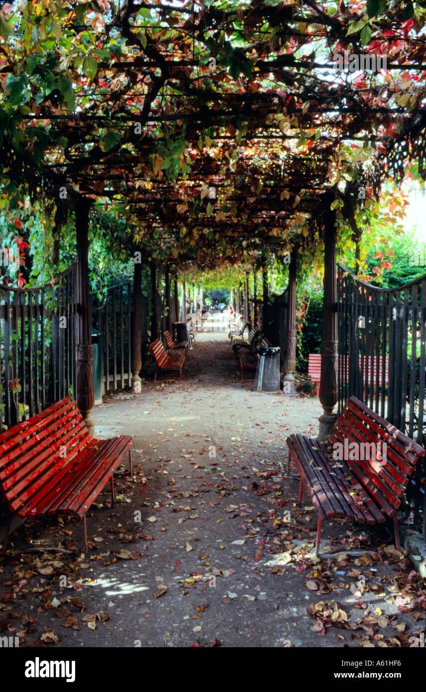 Public Park Benches Part - 43: Public Park Benches In A Pergola Covered Path. Venice, Italy