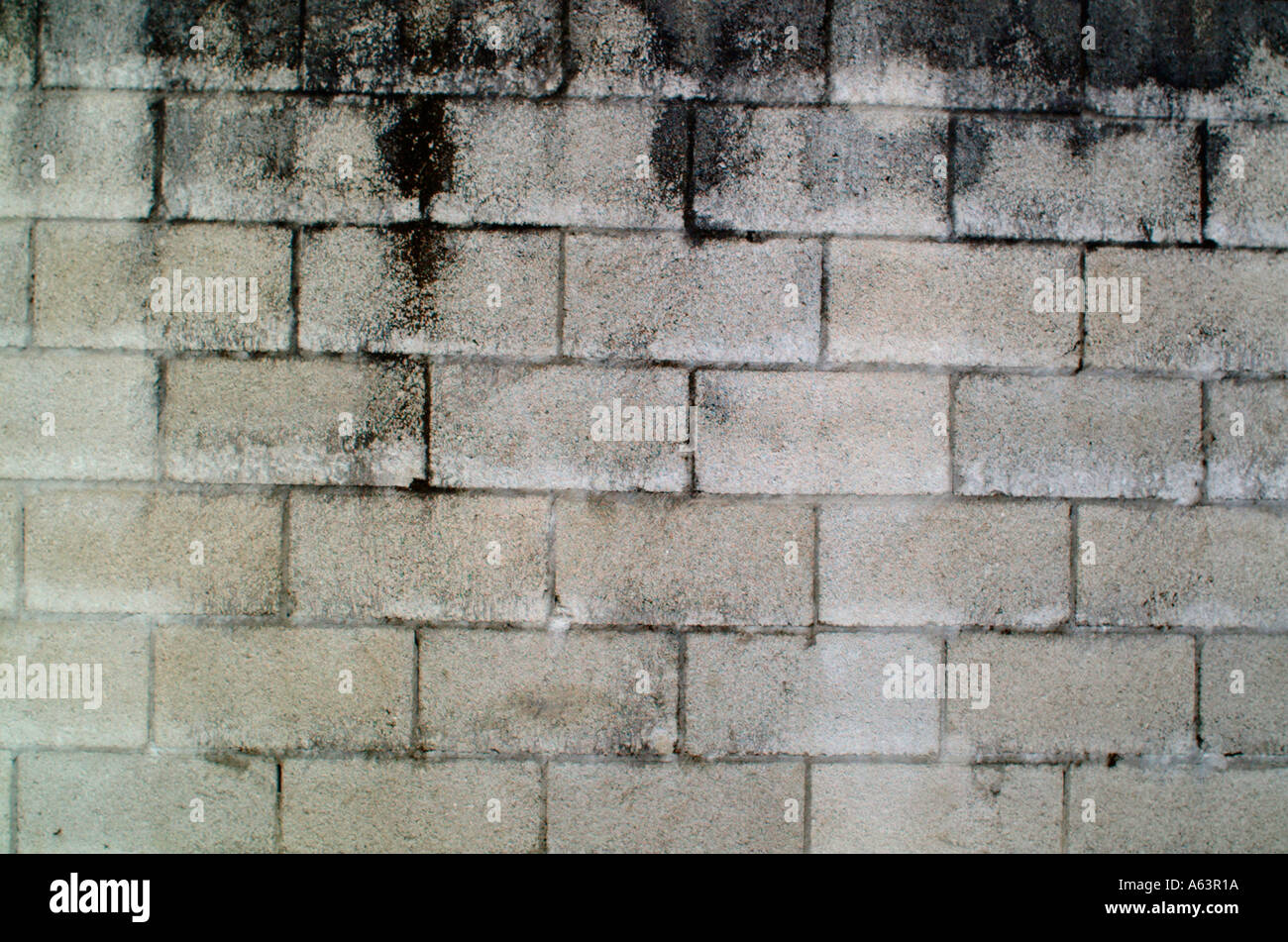 Dirty And Weathered White Brick Wall Background Texture. Stock ...