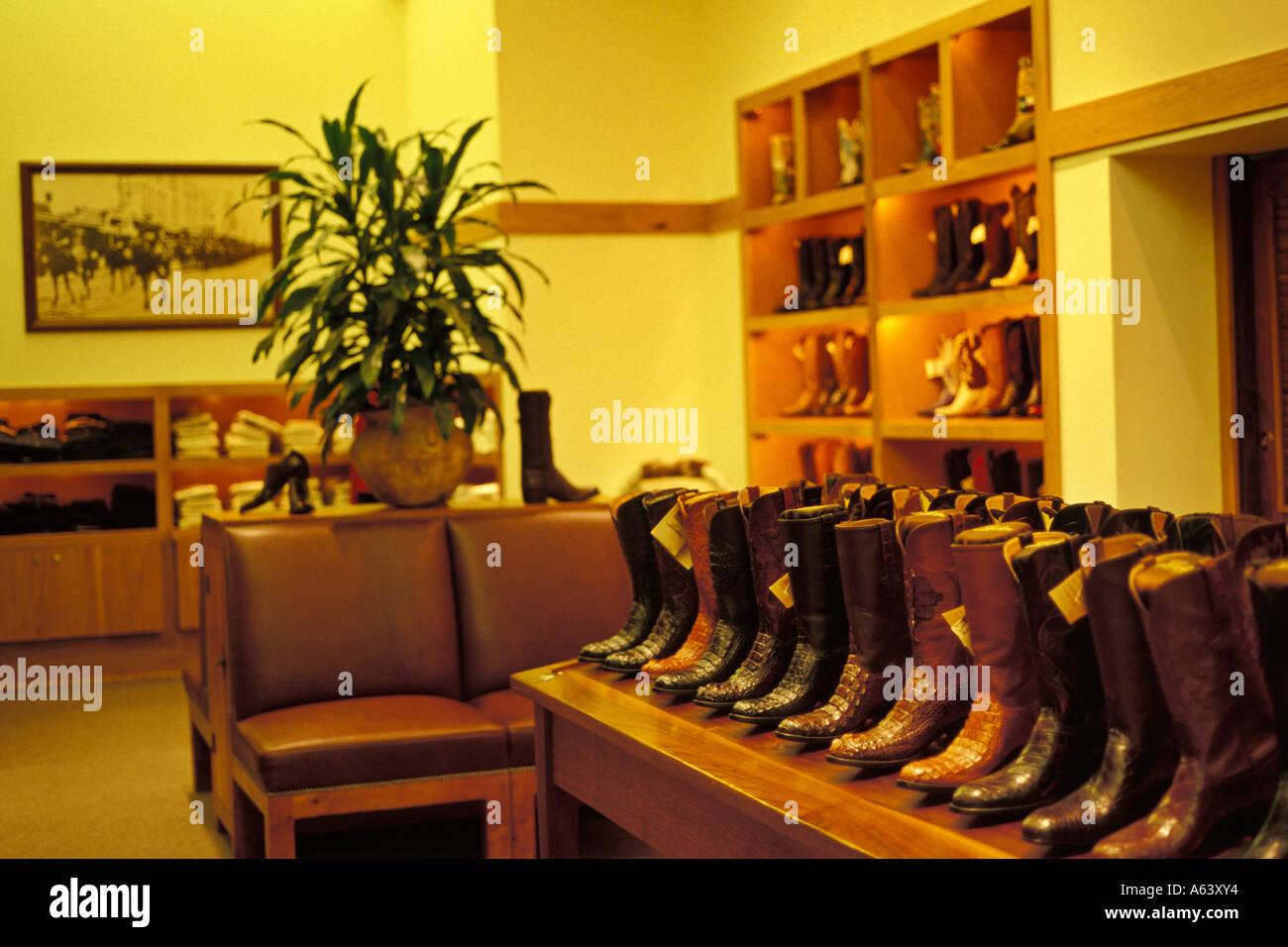 Handmade Western Boot Lucchese Boot Store At Alamo Quarry Mall San