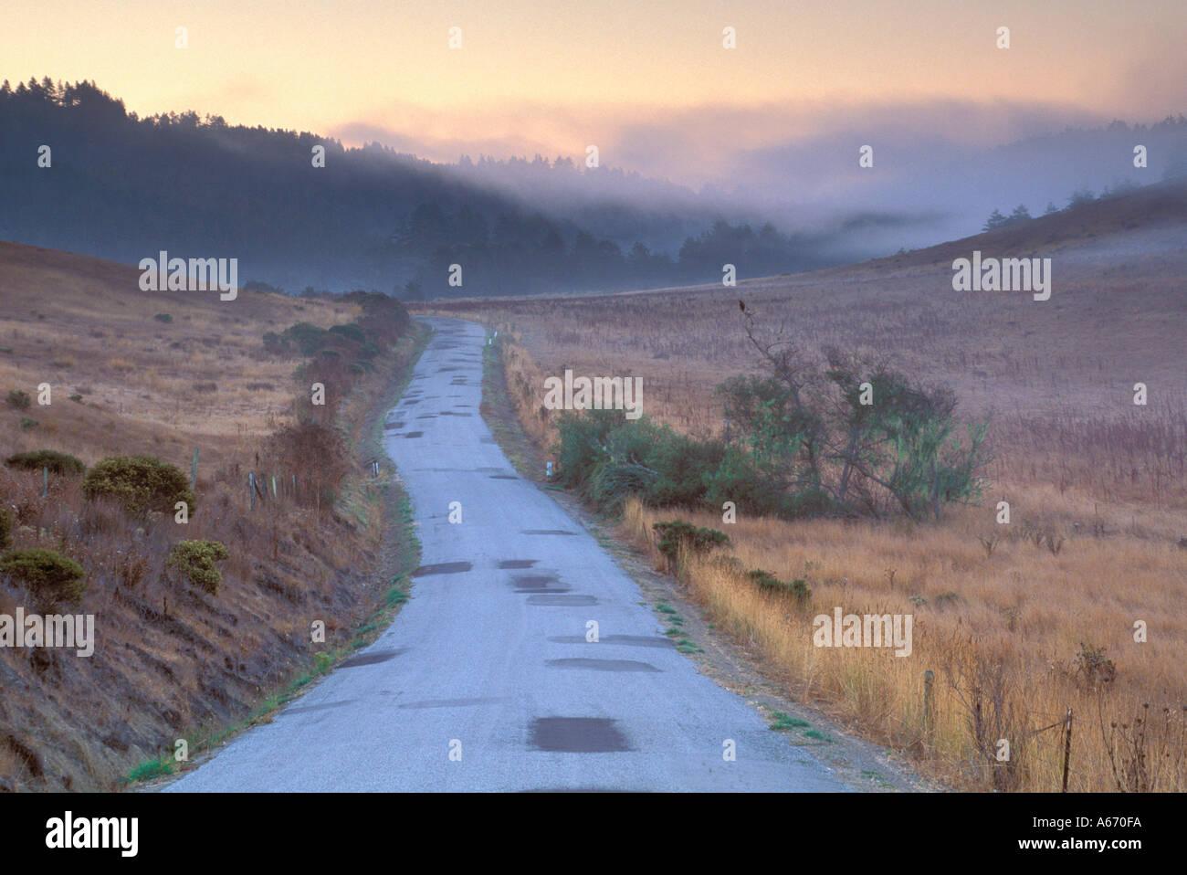 California san mateo county pescadero - Morning Light Over Rural Road Near Pescadero San Mateo County California