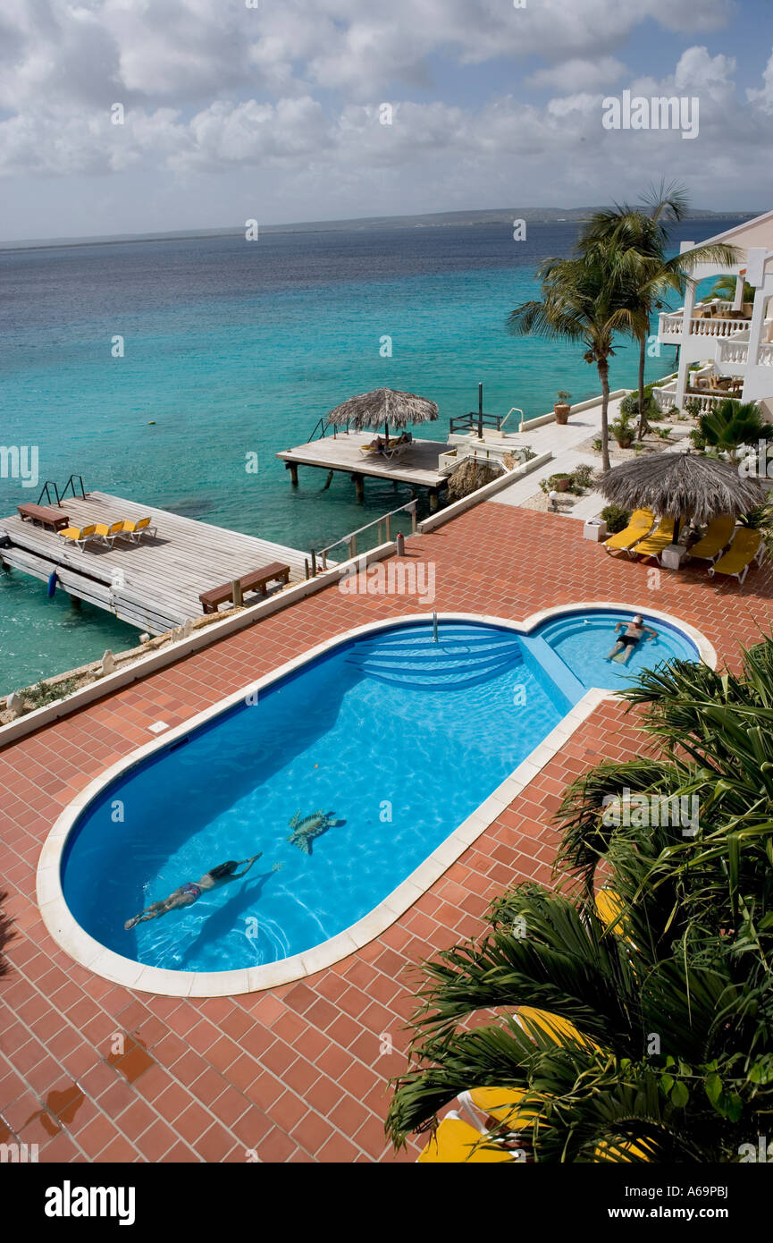 View of the swimmng pool dock at the belmar apartments - The dive hut bonaire ...
