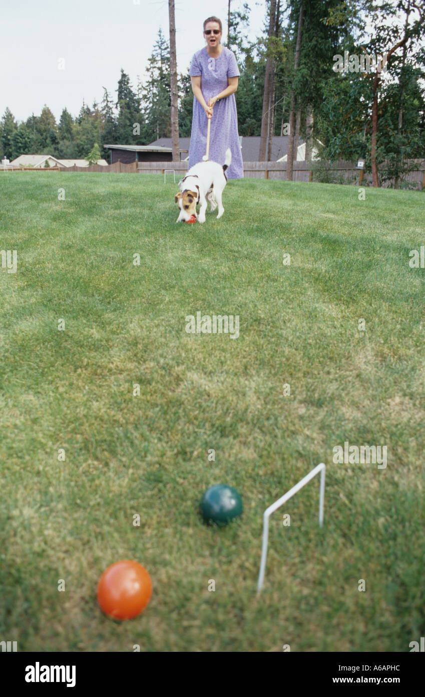 family playing croquet in backyard stock photo royalty free image