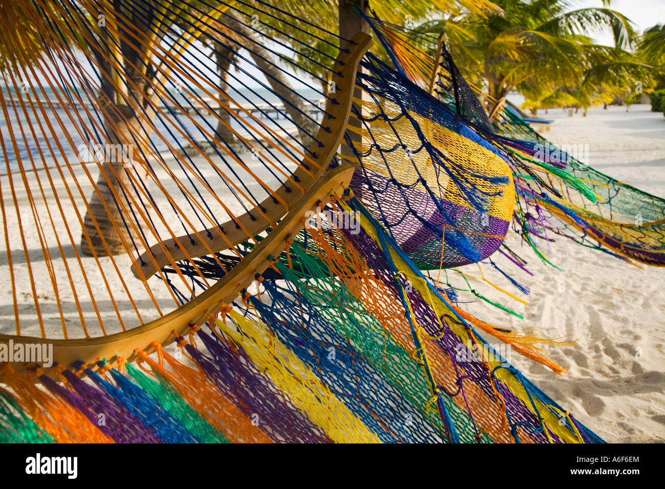 belize ambergris caye several colorful hammocks blowing in wind sandy beach and palm trees caribbean waters belize ambergris caye several colorful hammocks blowing in wind      rh   alamy
