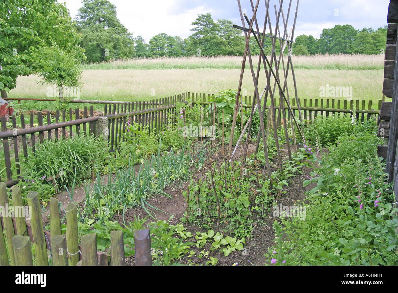 vegetable garden with onions, salad, beans and a garden fence, Garden idea