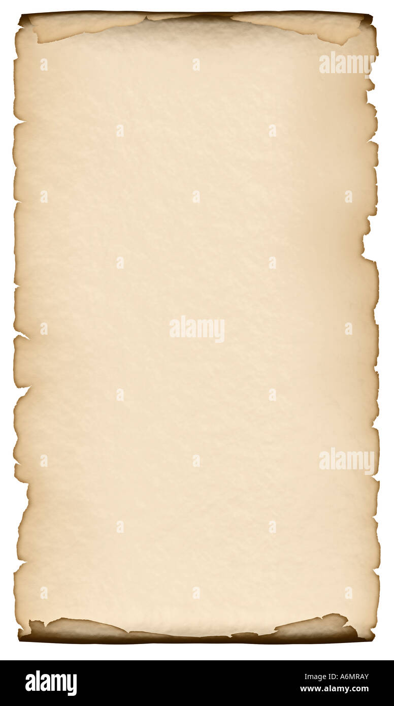 Unfolded Blank Roll Of Vintage Parchment Paper Background  Blank Paper Background