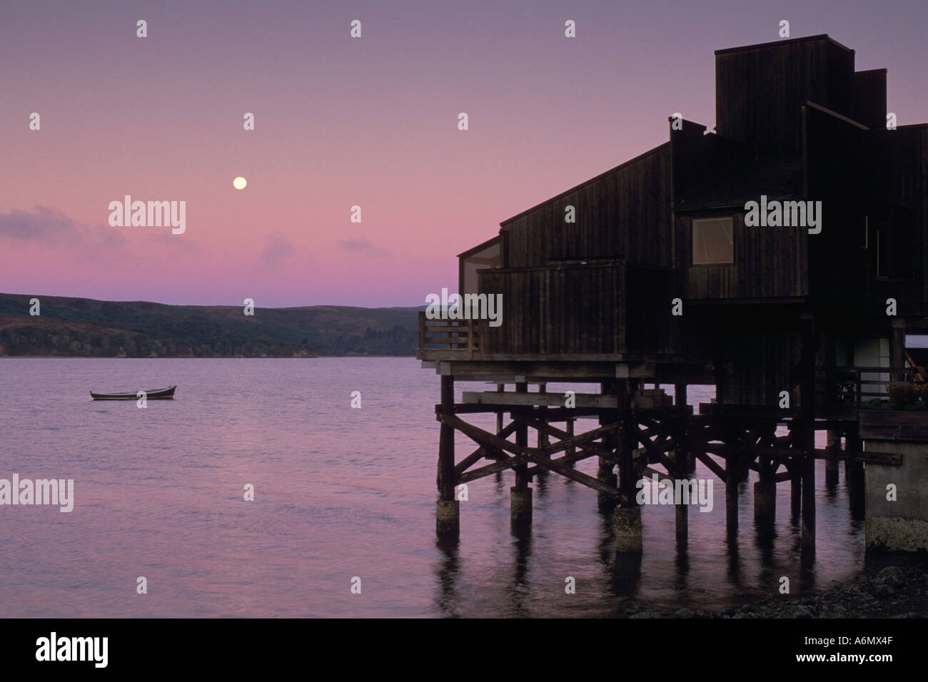 Wooden House On Stilts Over Water And Full Moon Set At Dawn Tomales Bay  Marin County California