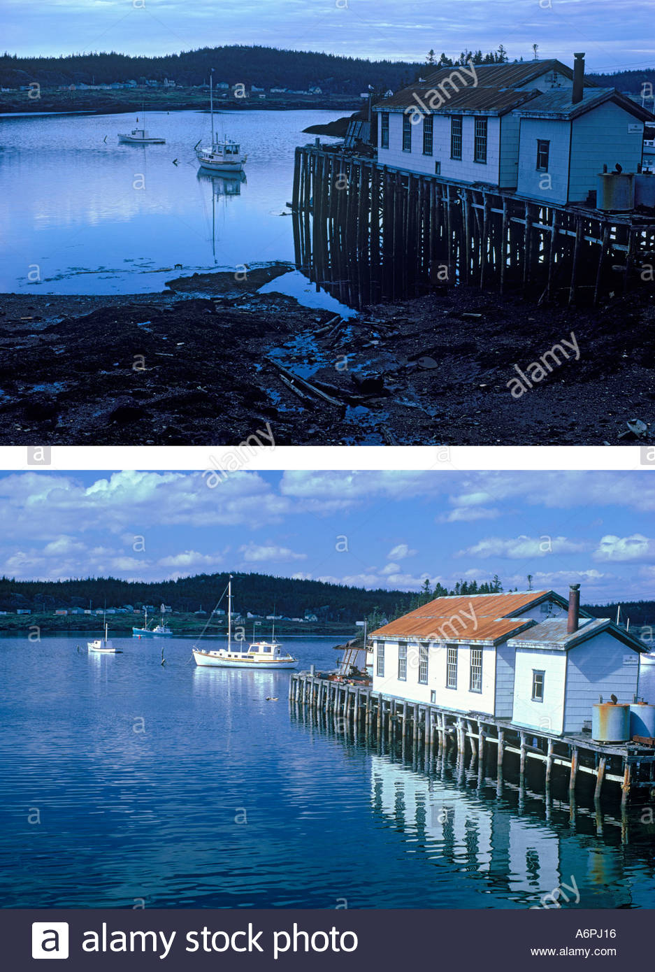 Image result for before and after tidal waves
