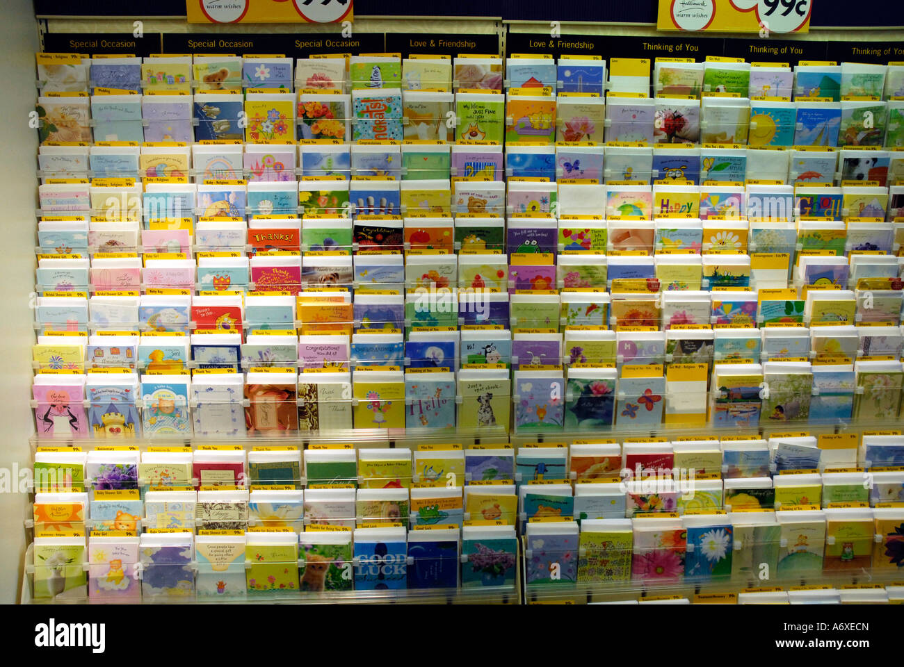 Greeting card display inside a retail store Photo Royalty – Birthday Card Store