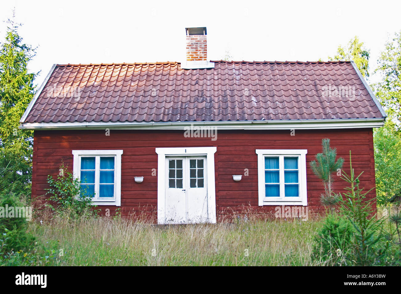 Swedish style house home design for Traditional swedish house plans