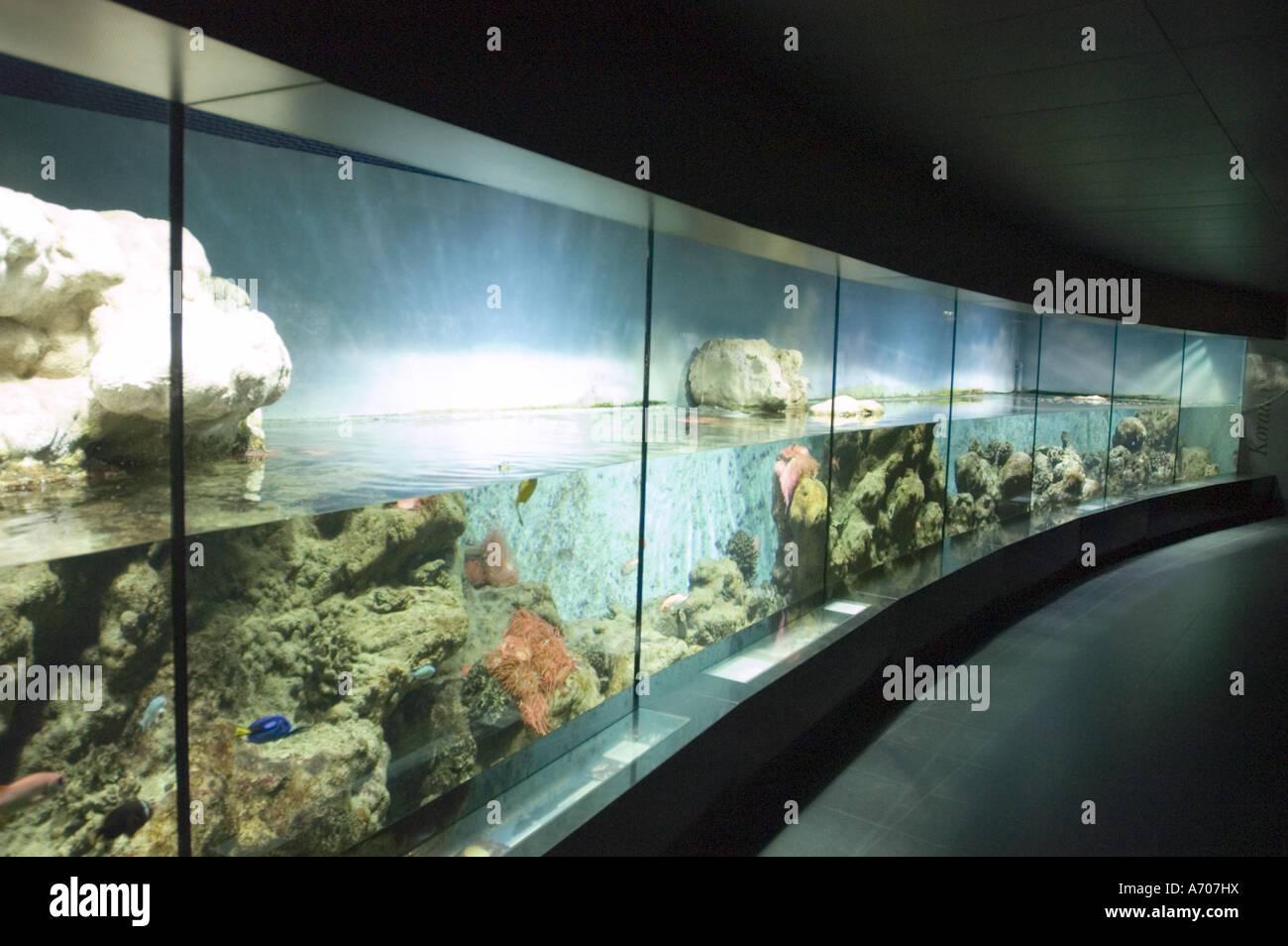amsterdam aquarium