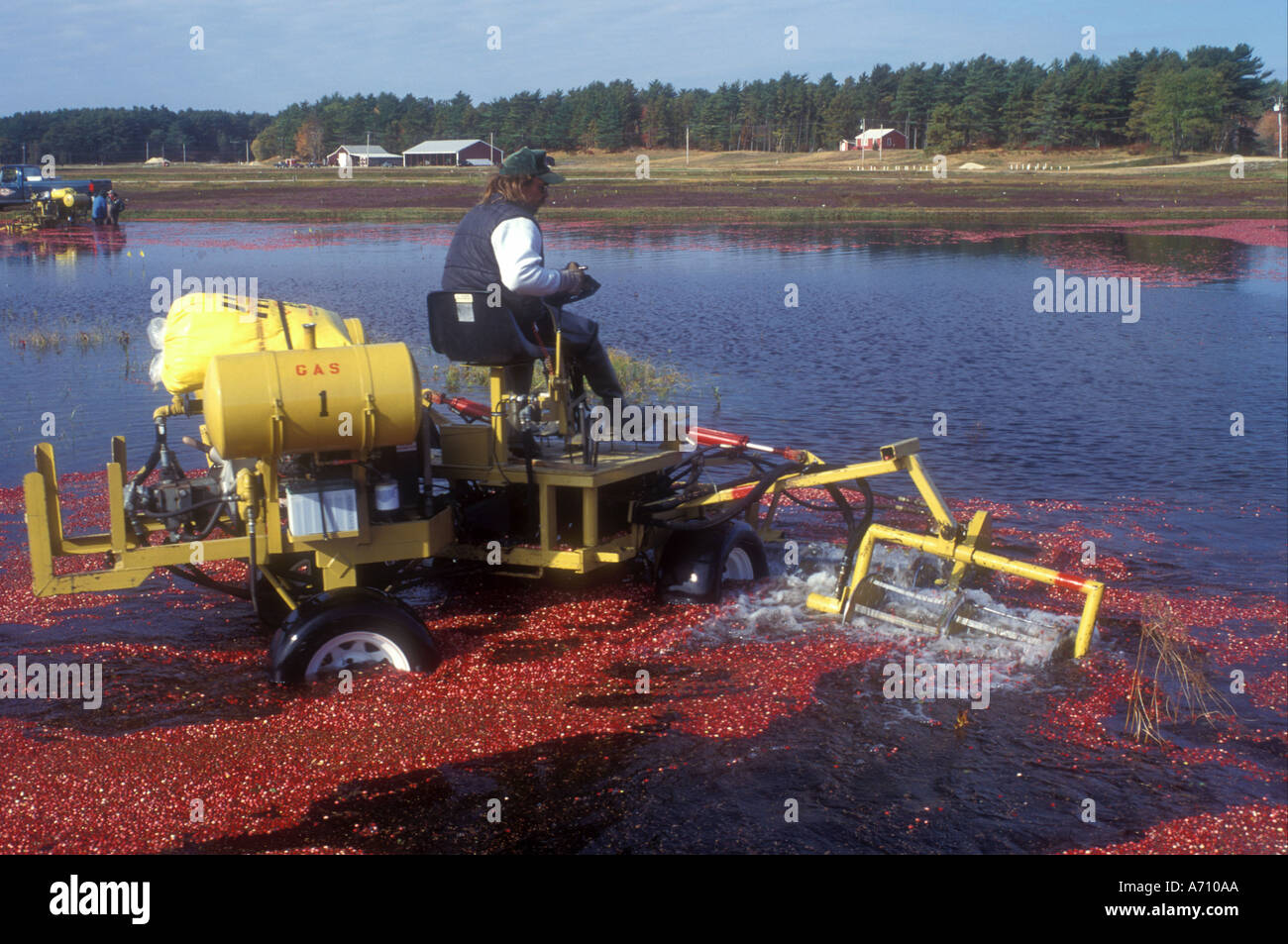 AJ0068, MA, South Carver, Massachusetts Stock Photo ...