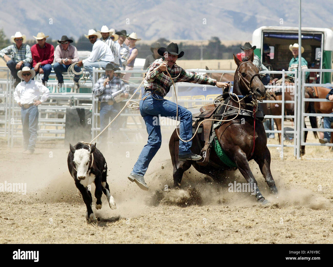 Wanaka Rodeo Wanaka New Zealand Picture By Barry Bland