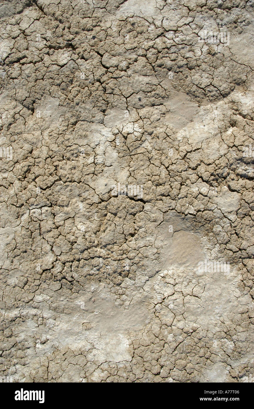 Cracked Cracked Bentonite Clay form the Death Valley California ...