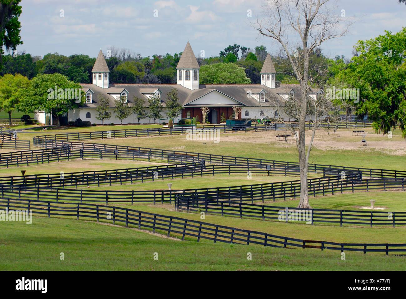 Horse farms in ocala florida fl stock photo royalty free for Horse farm