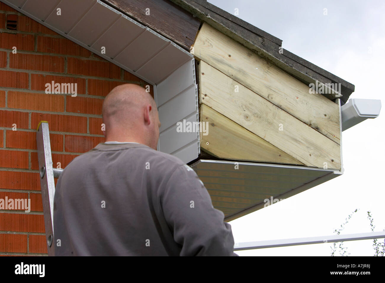 Shaven Headed Workman Installing White Pvc Cladding Over Repaired Wooden Panels On A Red Brick Bungalow