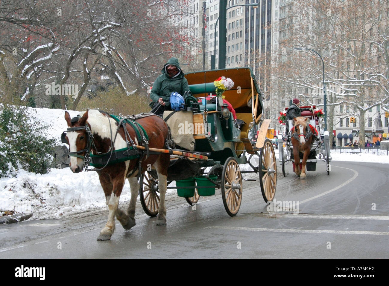 horse and carriage driver wrapped up against the cold central park stock photo 6782673 alamy. Black Bedroom Furniture Sets. Home Design Ideas