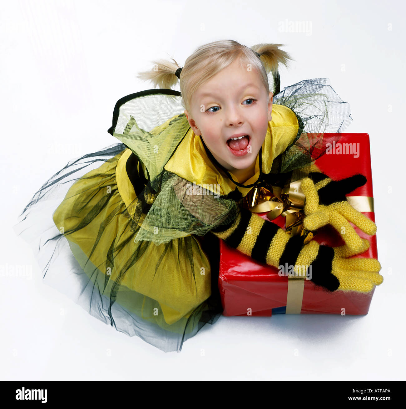 indoor studio girl child kid 5 10 blonde bunches smile ...