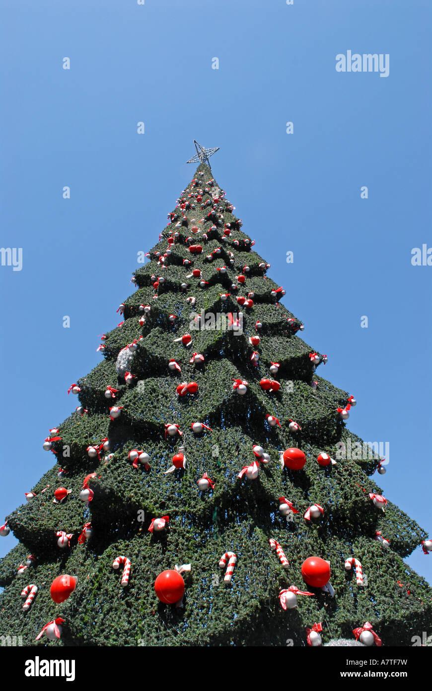 Christmas tree Santiago De Chile Plaza de Armas Stock Photo ...