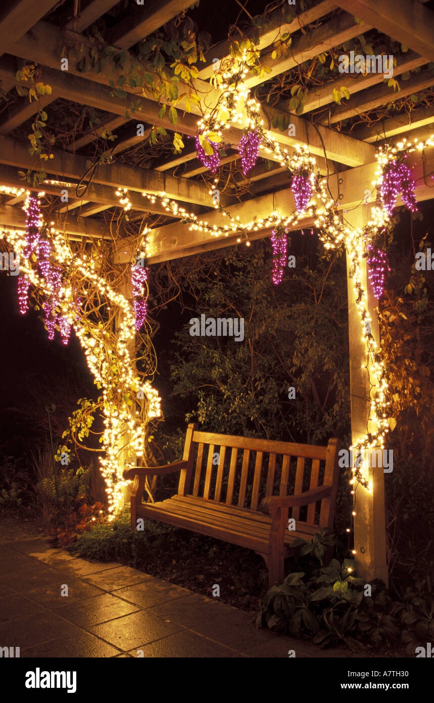 usa washington state bellevue botanical garden grape arbor in